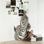 Magnetic Printed Zebra Wallpaper from Scandinavian Wallpaper & Decor